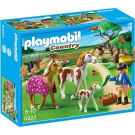 PLAYMOBIL - COUNTRY - WYBIEG DLA KONIA - 5227