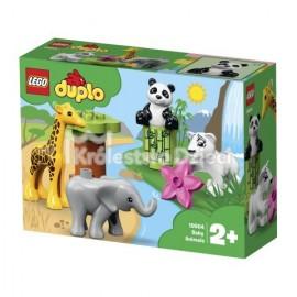 LEGO® - DUPLO® - MAŁE ZWIERZĄTKA - 10904