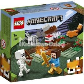 LEGO® - MINECRAFT™ - PRZYGODA W TAJDZE - 21162