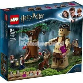LEGO® - HARRY POTTER™ - ROGOGON WĘGIERSKI NA TURNIEJU TRÓJMAGICZNYM - 75946