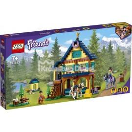 LEGO® - FRIENDS - KOSTKA GIER OLIVII - 41667